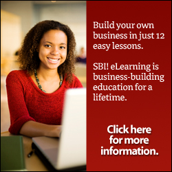 SBI eLearning online business building strategy